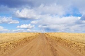 dry road field