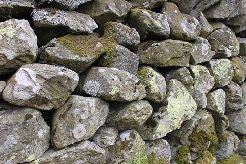 England stone wall, Graeme Scroggie
